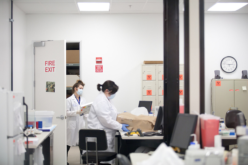 DNA Forensic scientists work at Orchid Cellmark in Dallas, Texas.