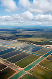 BELIZE, aerial views of the countryside farmland near Placencia