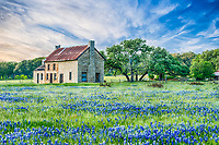 Bluebonnet House - We came back a second time to captured this old farm house with a little closer view with a field of bluebonnets in front of it in the Texas Hill Country making a nice landscape image.