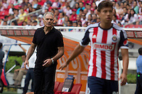 GUADALAJARA,JAL. AUGUST 4,2013.  coach Wilson Graniolatti of Atlante during the game of Liga MX between Chivas against Atlante at Omnilife Stadium. // Entrenador Wilson Graniolatti de Atlante durante el juego  de La Liga MX entre Chivas vs Atlante en el Estadio Omnilife. <br /> PHOTOS: NORTEPHOTO/GERMAN QUINTANA**CR&Eacute;DITO OBLIGATORIO** **USO EDITORIAL** **NO VENTAS** **NO ARCHIVO**