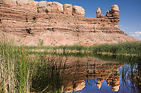 The local swimming hole -- a small reservoir among the sandstone walls -- at Bluff, Utah, June 30, 2010. The Red Rock Canyons Tour, organized by Lizard Head Cycling Tours, wound through 400 miles of the desert southwest. The route traveled through canyons and national monuments in Colorado, Utah and Arizona, ending at Lake Powell. (Kevin Moloney for the New York Times)