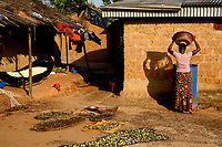 Food crops dry on the ground at the Georgekro cocoa farmers' settlement.