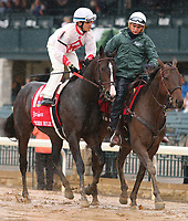 LEXINGTON, KY - October 8, 2017. #1 Tigers Rule and Miguel Mena coming onto the track for the Dixiana Bourbon Grade 3 $250,000 Keeneland Race Course, where they finished 2nd, but were moved to 3rd per objection.  Lexington, Kentucky. (Photo by Candice Chavez/Eclipse Sportswire/Getty Images)