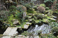 The 16th century 'crane and turtle' garden, Hosen-in Temple - the two pools reperesent the wings of the crane