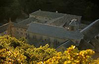 Europe/France/Provence -Alpes-Cote d'Azur/Vaucluse/env de Gordes: Abbaye Notre Dame de Sénanque dans la lumière du soir