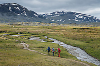 Hikers walk on trail in mountain landscape between Alesjaure and Tjäktja, Kungsleden trail, Lapland, Sweden