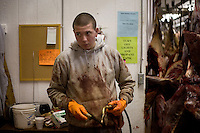 A worker sorts deer carcasses in a fridge before butchering the meat at House of Meats in Great Falls, Montana, USA.
