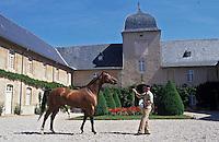 Europe/France/Auvergne/12/Aveyron/Rodez: Les Haras