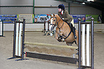 21/05/2017 - Classes 1 to 5 - BSPS Area 15 Summer show - Brook Farm training centre