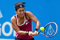 2013 AEGON International