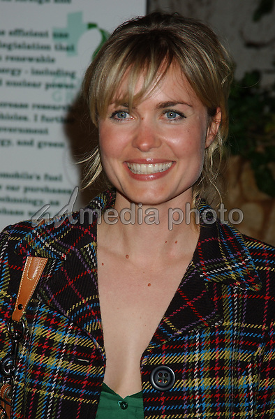 24 February 2005 - Hollywood, California - Radha Mitchell. Global Green For Clean Energy Solutions Pre-Oscar Party Supporting The Fight Against Global Warming held at the Day After Club. Photo Credit: Laura Farr/AdMedia