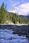 Tahoma River runoff from Mt. Rainier.  Mt. Rainier is heavily glaciated, dormant volcano surrounded by alpine parks. The 14,411 foot volcano which covers 228,480 acres was designated a National Park in 1899. Jim Bryant Photo. ©2012. All Rights Reserved...