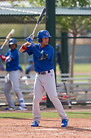 Chicago Cubs second baseman Carlos Penalver (11) during a Minor League Spring Training game against the Colorado Rockies at Sloan Park on March 27, 2018 in Mesa, Arizona. (Zachary Lucy/Four Seam Images)