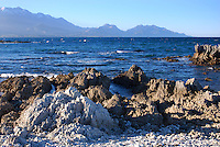 Shoreline, rock formations, Kaikoura, South Island, New Zealand, 201004105286..Copyright Image from Victor Patterson, 54 Dorchester Park, Belfast, United Kingdom, UK. Tel: +44 28 90661296. Email: victorpatterson@me.com; Back-up: victorpatterson@gmail.com..For my Terms and Conditions of Use go to www.victorpatterson.com and click on the appropriate tab.