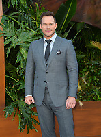 Chris Pratt at the premiere for &quot;Jurassic World: Fallen Kingdom&quot; at the Walt Disney Concert Hall, Los Angeles, USA 12 June 2018<br /> Picture: Paul Smith/Featureflash/SilverHub 0208 004 5359 sales@silverhubmedia.com