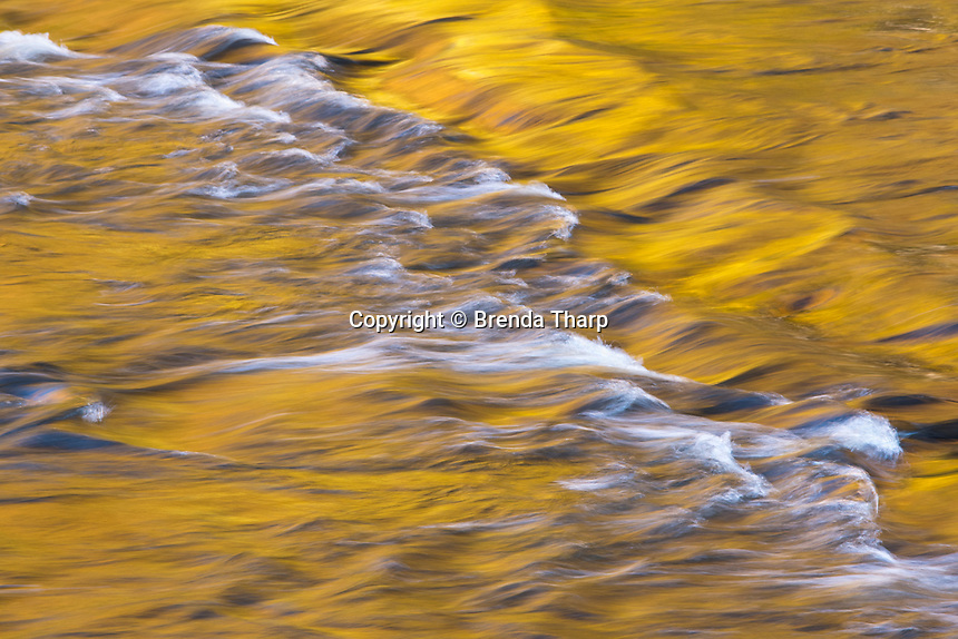 Golden light reflects off the flowing Presque Isle River, Wisconsin.