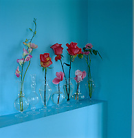A vivid and delicate arrangement of single flowers in transparent glass vases is displayed on an open shelf in the blue living room of an 18th century house in Holland