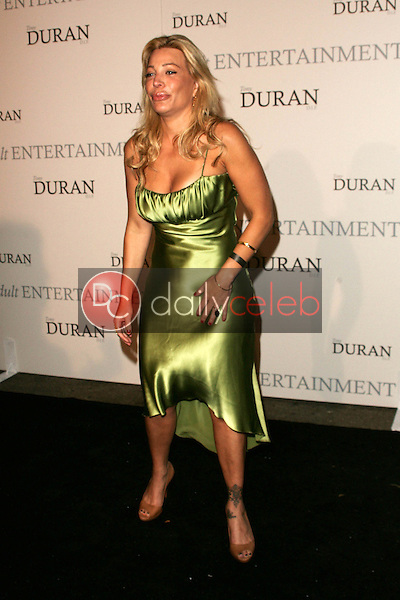 Taylor Dayne<br />