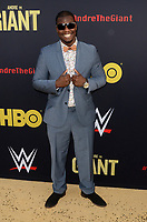 """LOS ANGELES - FEB 29:  Kevin Raphael at the """"Andre The Giant"""" HBO Premiere at the Cinerama Dome on February 29, 2018 in Los Angeles, CA"""