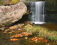 Upper Greeter Falls in the fall; Savage Gulf State Park, TN