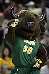 North Dakota State mascot points to fans during their game against Gonzaga during the 2015 NCAA Division I Men's Basketball Championship's March 20, 2015 at the Key Arena in Seattle, Washington.    ©2015. Jim Bryant Photo. ALL RIGHTS RESERVED.