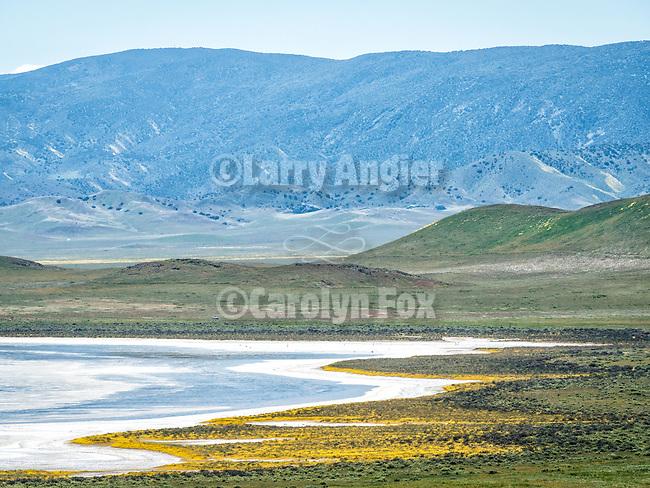 Soda Lake road, Soda Lake and clouds, spring, Carrizo Plain, San Luis Obispo County, Calif.