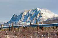 Trans Alaska oil pipeline traverses the winter tundra with mt Sukakpak of the Brooks Range mountains in the distance.