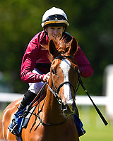 Time Change ridden by Richard Kingscote goes down to the start of The Smith & Williamson British EBF Fillies' Handicap (Class 3)   during Afternoon Racing at Salisbury Racecourse on 17th May 2018