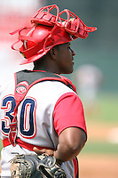 August 25 2008:  Catcher Luis Ramon Arzeno of the Williamsport Crosscutters, Class-A affiliate of the Philadelphia Phillies, during a game at Dwyer Stadium in Batavia, NY.  Photo by:  Mike Janes/Four Seam Images