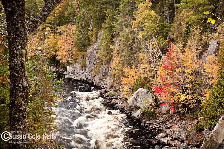 Fall foliage at Ripogenus Gorge, Piscataquis County, ME
