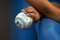 Dunedin Blue Jays fan holds out a baseball for players to sign before the second game of a doubleheader against the Palm Beach Cardinals on July 31, 2015 at Florida Auto Exchange Stadium in Dunedin, Florida.  Dunedin defeated Palm Beach 4-0.  (Mike Janes/Four Seam Images)