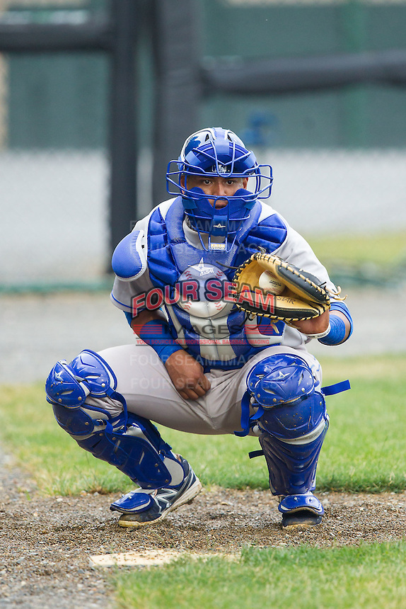 Burlington Royals catcher Meibrys Viloria (29) warms up the starting pitcher in the bullpen prior to the game against the Pulaski Mariners at Calfee Park on June 20, 2014 in Pulaski, Virginia.  The Mariners defeated the Royals 6-4. (Brian Westerholt/Four Seam Images)