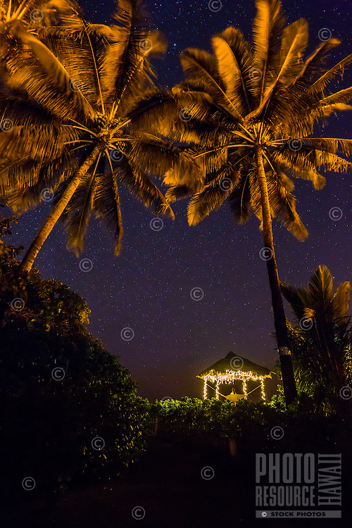 Palm trees frame a woman looking at the stars from a hammock in a hut lit with Christmas lights