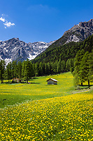 Italy, South Tyrol (Trentino - Alto Adige), near Sexten, district Moos: the picturesque Fischleintal (Val Fiscalina) at Drei Zinnen Nature Park (Parco Naturale Tre Cime) side valley of Sexten Valley (Valle di Sesto) - and Sexten Dolomites | Italien, Suedtirol, bei Sexten, Ortsteil Moos: das malerische Fischleintal im Naturpark Drei Zinnen - ein Nebental des Sextentals - vor den Sextener Dolomiten