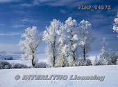 Marek, CHRISTMAS LANDSCAPES, WEIHNACHTEN WINTERLANDSCHAFTEN, NAVIDAD PAISAJES DE INVIERNO, photos+++++,PLMP0457Z,#xl#