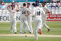 Peter Siddle of Essex celebrates with his team mates after taking the wicket of Will Rhodes during Essex CCC vs Warwickshire CCC, Specsavers County Championship Division 1 Cricket at The Cloudfm County Ground on 14th July 2019
