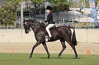 Smartest On Parade Rider 12-U15
