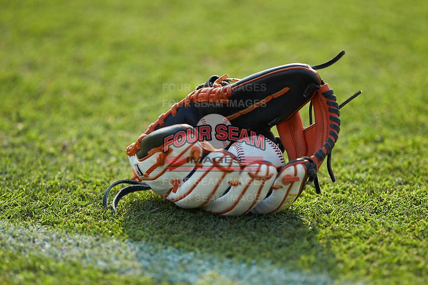A baseball sits inside a glove prior to the South Atlantic League game between the Delmarva Shorebirds and the Kannapolis Intimidators at Kannapolis Intimidators Stadium on June 4, 2019 in Kannapolis, North Carolina. The Intimidators defeated the Shorebirds 9-0. (Brian Westerholt/Four Seam Images)