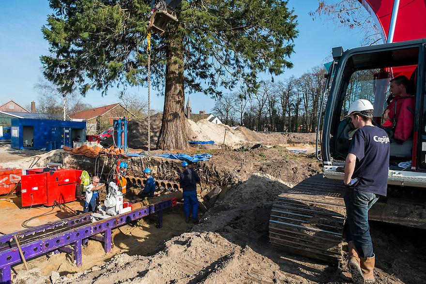Nederland, Driebergen, 10 maart 2014<br /> Twee zeldzame bomen die in Driebergen  op de bouwlokatie voor de nieuwe woonwijk de Groene Tuinen staan, worden 50 meter verplaatst. Boomspecialisten van Copijn voeren de operatie uit. Er worden buizen onder de boom aangebracht, vervolgens wordt er een glij-installatie geinstalleerd waarover de boom met wortels en al naar zijn nieuwe plek wordt geschoven. Een heel karwei, maar de bomen zijn dan ook zeldzaam. <br /> De boom op de foto is een Sequoia dendron gigantum. Stamdiameter 138 cm, 16 meter hoog en 70 jaar oud. <br /> Foto(c): Michiel Wijnbergh