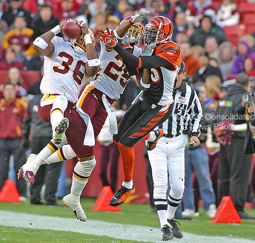 Washington, DC - November 28, 2007 -- File photo of Washington Redskins Safety Sean Taylor (36) taken on at FedEx Field in Landover, Maryland on November 14, 2004 showing Taylor's first quarter interception of a Carson Palmer pass intended for wide receiver Chad Johnson.  Taylor, then a rookie, wore jersey number 36.  He switched to number 21 for the 2005 season when cornerback Fred Smoot left the team through free agency.  Taylor died in Miami, Florida on Tuesday, November 27, 2007 following a shooting in his home..Credit: Arnie Sachs / CNP