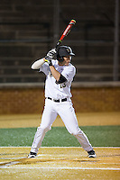 Keegan Maronpot (13) of the Wake Forest Demon Deacons at bat against the Georgetown Hoyas at David F. Couch Ballpark on February 19, 2016 in Winston-Salem, North Carolina.  The Demon Deacons defeated the Hoyas 3-1.  (Brian Westerholt/Four Seam Images)