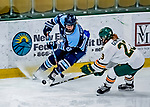 1 December 2018: University of Maine Black Bear Defender Brittany Kucera, a Junior from Toronto, Ontario, in second period action against the University of Vermont Catamounts at Gutterson Fieldhouse in Burlington, Vermont. The Lady Cats defeated the Lady Bears 3-2 in the second game of their 2-game Hockey East series. Mandatory Credit: Ed Wolfstein Photo *** RAW (NEF) Image File Available ***
