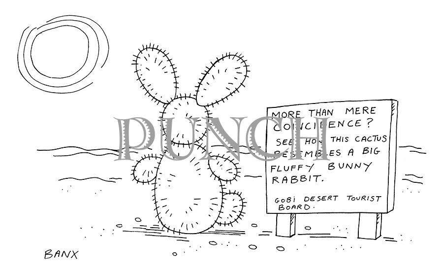 (cactus shaped like bunny rabbit)