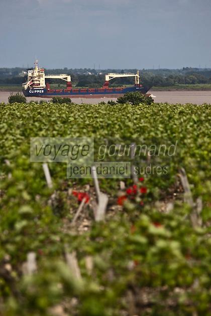 Europe/France/Aquitaine/33/Gironde/Saint-julien-Beychevelle: Le vignoble de Château Léoville Las Cases et cargo sur  l'Estuaire de la Gironde