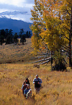 A family of five hiking in a meadow amidst fall color in Rocky Mtn Nat'l Park, CO.