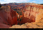 Wall Street, View from the Rim, Bryce Canyon National Park, Utah