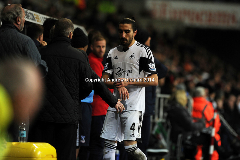Swansea city's Chico Flores walks off down the tunnel after veing sent off.. Barclays Premier league, Swansea city v Crystal Palace match at the Liberty Stadium in Swansea, South Wales on Sunday 2nd March 2014.