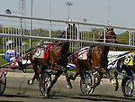 Standardbred action at the Meadowlands Racetrack  in East Rutherford, New Jersey. Photo By Bill Denver/EQUI-PHOTO
