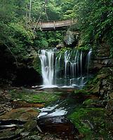 Blackwater Falls State Park, WV<br /> A walking Bridge over Elakala Falls on Shay Run flowing into Blackwater Gorge