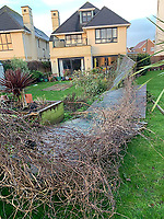 BNPS.co.uk (01202 558833)<br /> Pic: /BNPS.<br /> <br /> Fences flattened across a swathe of back gardens.<br /> <br /> Homeowners are counting the cost today after a 'tornado' hit a south coast town overnight.<br /> <br /> Residents in Barton-on-Sea, Hants, were woken at 4am as the twister blasted its way through the town like an 'express train'. <br /> <br /> The strength of the winds of up to 80mph shook numerous houses, sending roof tiles smashing to the ground.<br />  <br /> A 30ft long brick wall collapsed under the strength of the gusts while fence panels were flung through the air.<br /> <br /> Part of a garden shed that had been picked up by the tornado smashed a hole through the windscreen of a car.